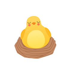 Cute baby chicken sleeping in the nest funny vector