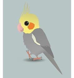 Cute cockatiel vector