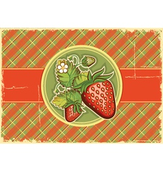Strawberries vintage background vector image