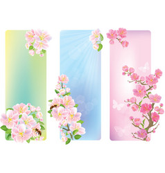 Vertical banners with a blossoming branch vector image