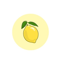 Icon colorful lemon vector