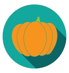 Flat pumpkin icon colorful vector