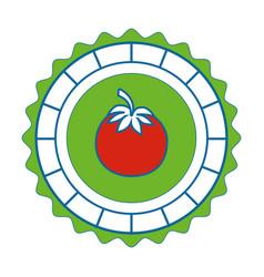 Isolated round icon tomato vector