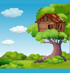 old treehouse on the tree vector image