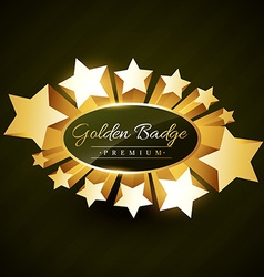 Beautiful golden star burst label vector
