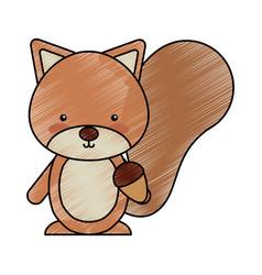 Cute chipmunk woodland animal vector