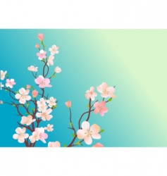 blossoming tree vector image
