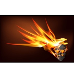 Fire dragon and skull vector