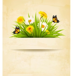 Grass with flowers on old paper background vector image vector image