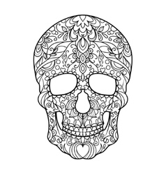 Skull coloring book for adults vector image