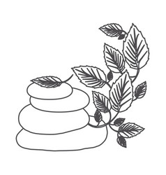 Grayscale contour of lava stones and creeper plant vector