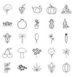 Forest plants icons set outline style vector