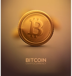 Gold Bitcoin vector image vector image