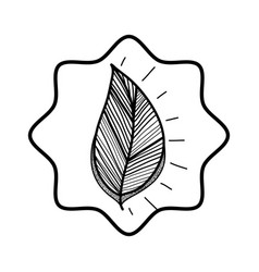 Rustic leaf decoration design vector