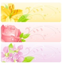 Summer flowers banner set with natural background vector image vector image