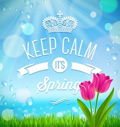 Keep calm its spring vector