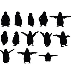 Baby animal penguin silhouette vector