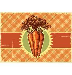 Carrots vintage label vector image vector image