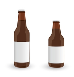 Glass Beer Brown Bottle On White Background vector image vector image