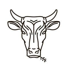 portrait of cow farm animal bull icon or logo vector image