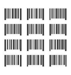 Bar Codes Set on White Background vector image
