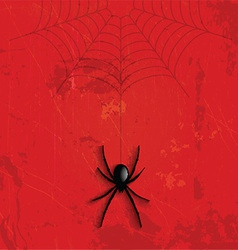Grunge Halloween spider background vector image vector image