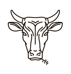 portrait of cow farm animal bull icon or logo vector image