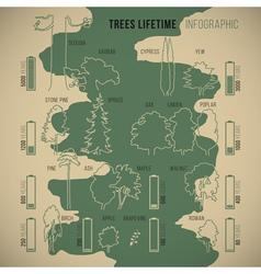 Treeinfographic vector