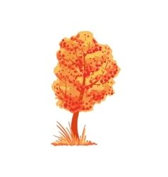 Tree with orange leaves as autumn attribute vector