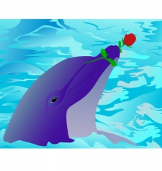 dolphin and a rose vector image