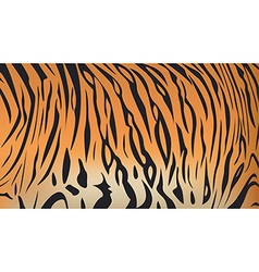 Bengal tiger stripe pattern vector