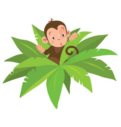 Little funny monkey vector