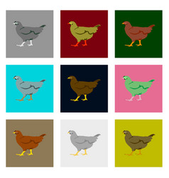set of in flat style hen vector image
