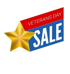 Veterans day sale banner template vector