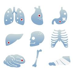 Disease vector
