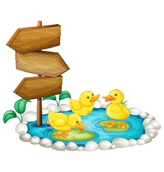Wooden sign and ducks in the pond vector image