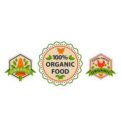 flat style of bio organic eco healthy food label vector image vector image