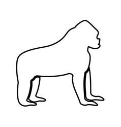 gorilla it is black icon vector image vector image