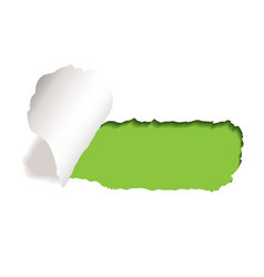 Paper tear vector