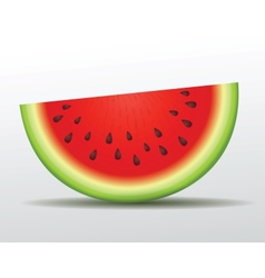 Watermelon slice isolated vector