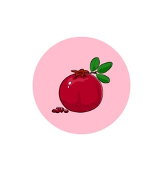 Icon colorful pomegranate vector
