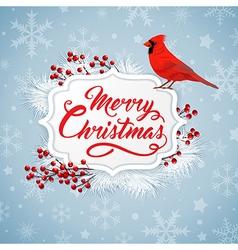 Christmas background with cardinal bird vector