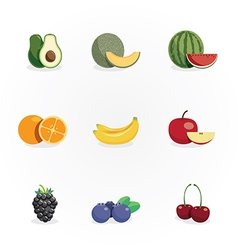 fruits icons design vector image