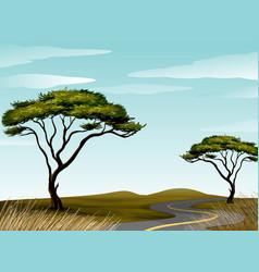 road through savanna field vector image vector image
