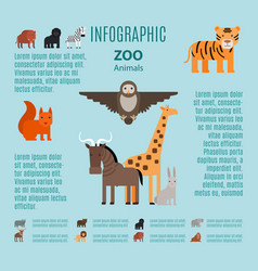 Zoo animals infographic vector