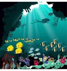 Coral reef with various species of fish vector