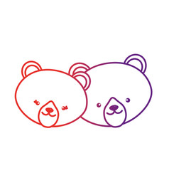 line cute bear head animal couple together vector image vector image