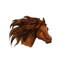 Running horse head close up portrait vector