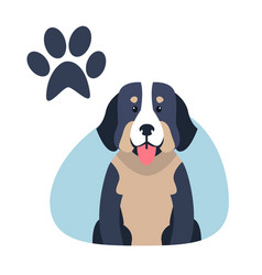 Heavy bernese mountain dog paw print flat design vector