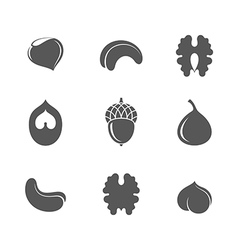 Nuts icon set vector